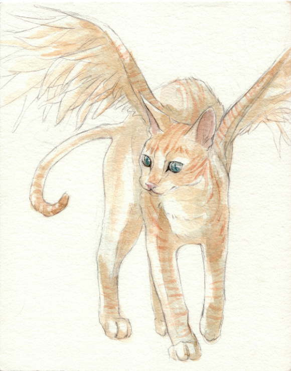 Wignedcat